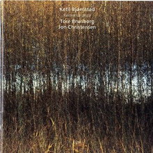 ketil bjornstad - remembrance (2010)